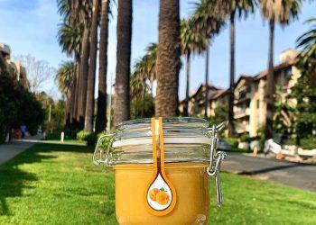 Creamed honey with apricots Nectar Senco Los Angeles, USA